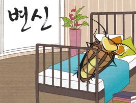 [변신] 벌레로 변한 주인공의 정체성 찾기 여정