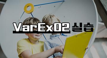 VarEx02 실습