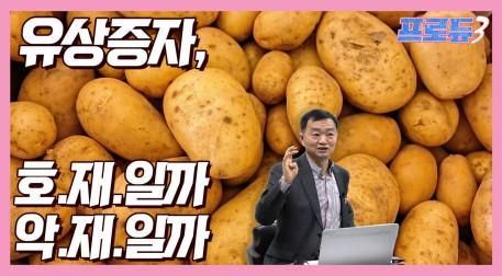 [주식용어정리] 감자가 뭐예요? 먹는건가? 주린이들이 알아야할 개념 정리