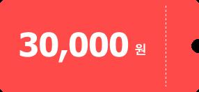 30,000원 쿠폰